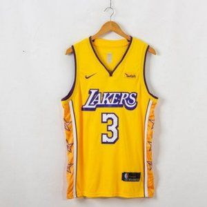 LeBron James Los Angeles Lakers Purple NBA Jersey